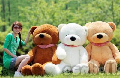 Gấu bông xịn hàng nhập đón giáng sinh